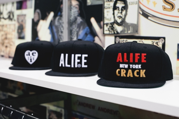 alife blog 6