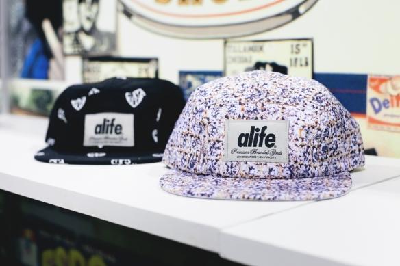 Alife blog7